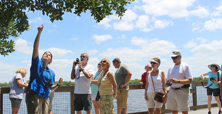 Image of the refuge tram tour at Tarpon Bay Explorers