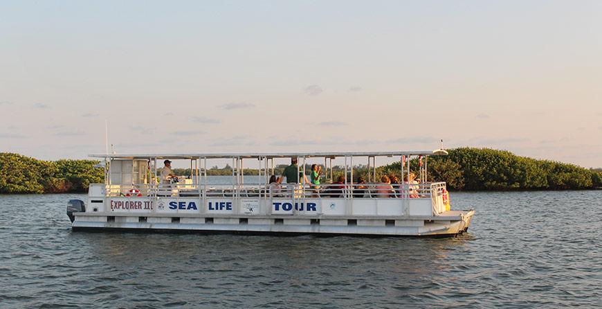 Image of the evening cruise at Tarpon Bay Explorers