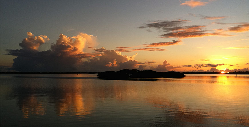Image from the evening cruise at Tarpon Bay Explorers