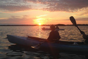 Image of the sunset rookery paddle tour at Tarpon Bay Explorers